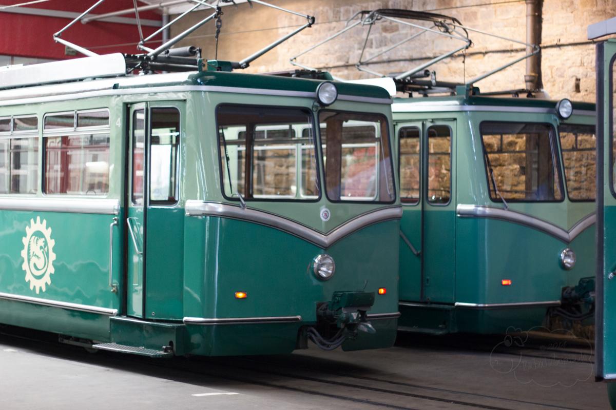 Zahnradbahn001