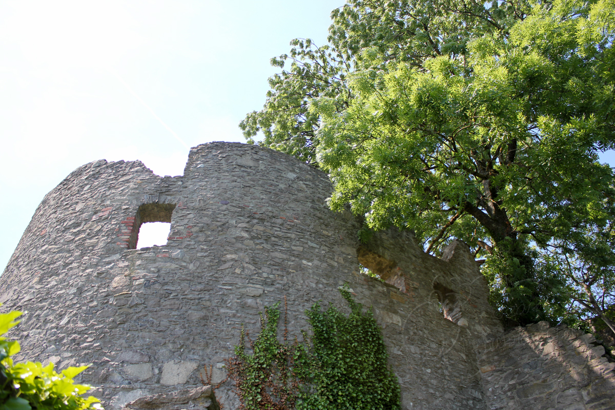 Hohentwiel002t