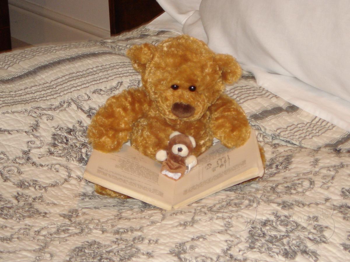 TeddysGrosseReise003h