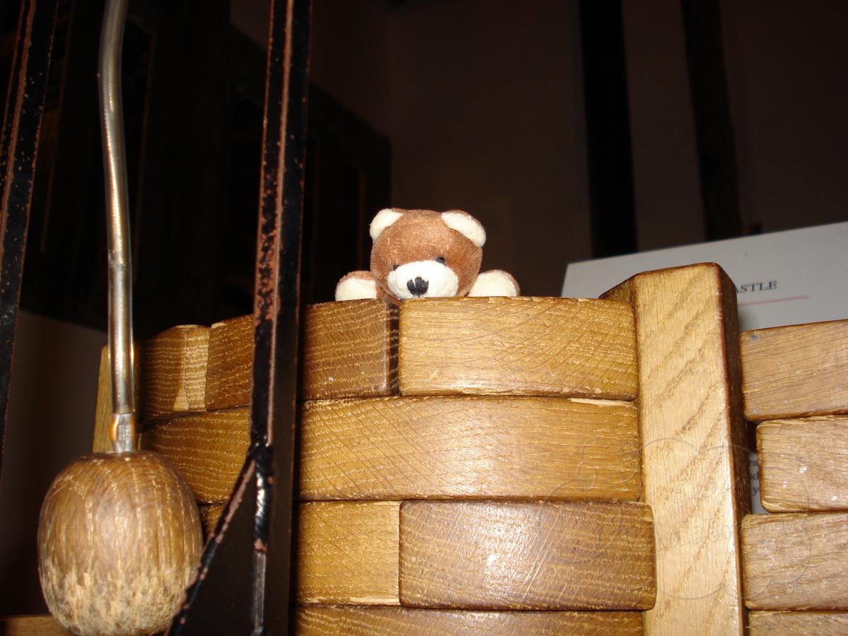 TeddysGrosseReise003o